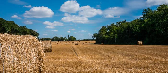 Illustration part de l'utilisation du fioul dans le secteur agricole
